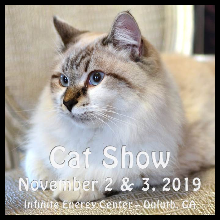 Cotton States 2019 Cat Show Announcement